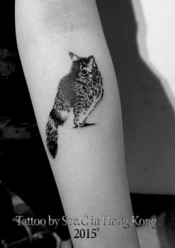 cat2015